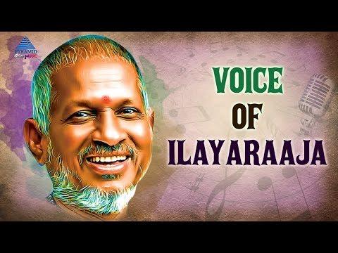 Voice of Ilayaraja | Video Jukebox | Ilayaraja Tamil Songs | Tamil Movie Songs | Pyramid Glitz Music