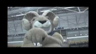 "Dance | ""Gangnam Style"" - Eggy The Mascot Flash Mob"