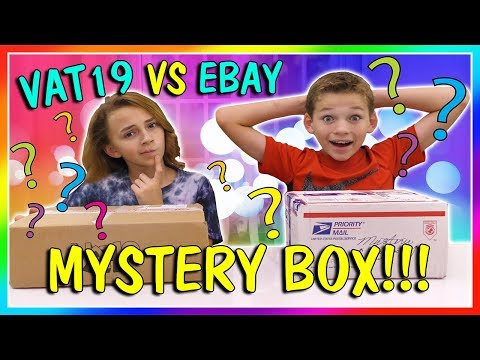VAT19 VS EBAY MYSTERY BOX OPENNING | We Are The Davises