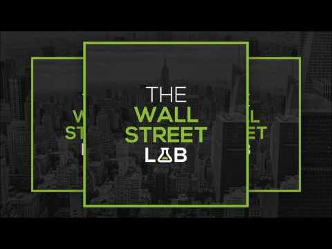 #12 Joerg de Vries-Hippen - Equity Research | The Wall Street Lab (Podcast)