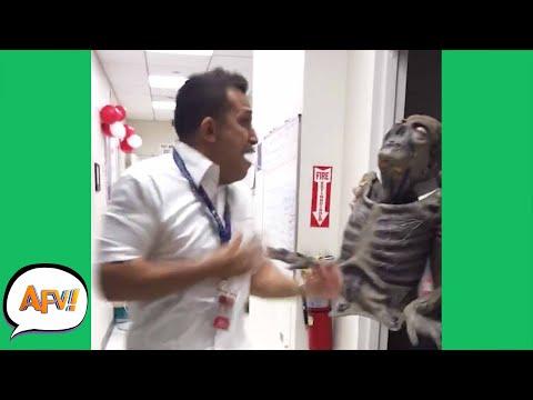 Try Not to SCREECH! 😱😂   Funny Pranks & Fails   AFV 2020