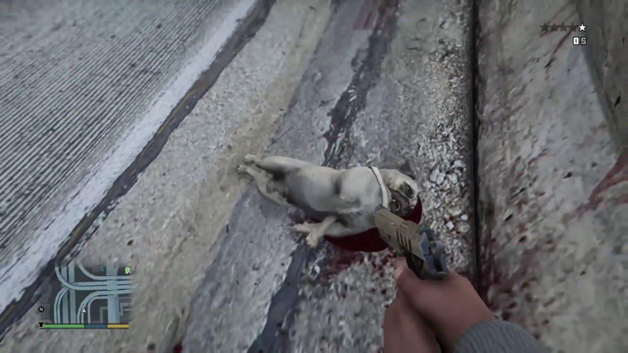 kill doug the pug - YouTube