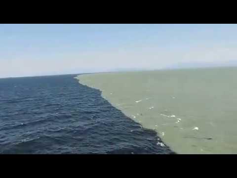 Gulf of Alaska, where two oceans meet but never get mixed