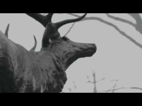 Agalloch - You Were But A Ghost In My Arms (with lyrics)