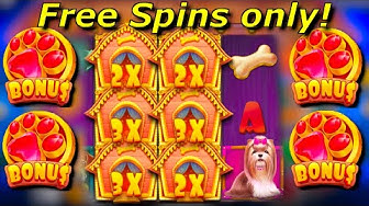 x255 win / The Dog House free spins only compilation! #5