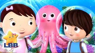Tropical Corals | NEW | Little Baby Bum Junior | Kids Songs | LBB Junior | Songs For Kids