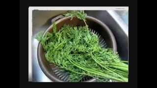 видео Ботва моркови: полезные свойства