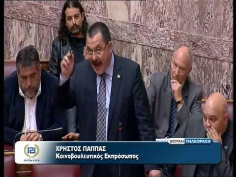 Χρυσή Αυγή στο πλευρό των Κυπρίων αδερφών - ΒΙΝΤΕΟ