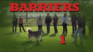 Teach your dog to stay in your yard- Invisible Barriers Part 1- Clicker Dog Training