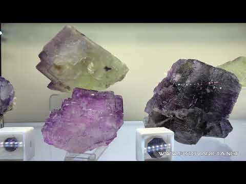 EuroMineralExpo 2017 Torino, International Exhibition of Minerals & Fossils, Minerali e Fossili (7)