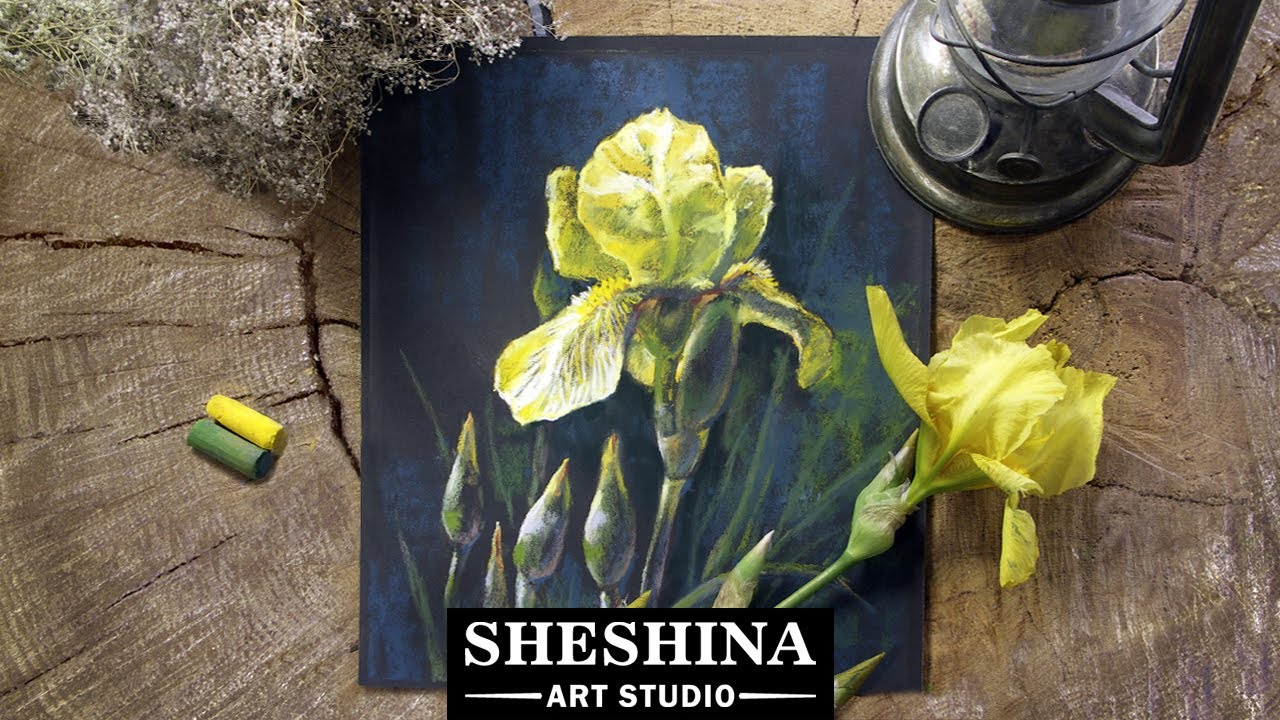 How to draw yellow iris with soft pastels flowers youtube how to draw yellow iris with soft pastels flowers izmirmasajfo
