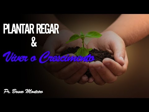 Plantar, Regar e Viver o Crescimento - Café de Pastores MDA