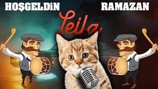 ACIKTIM - Reynmen Leila (Parodi) / Konuşan Kediler