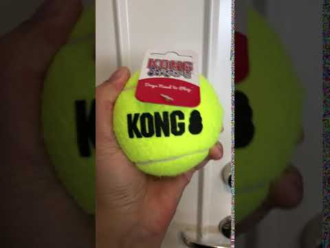 Kong AirDog Squeakair Tennisboll med pip XL