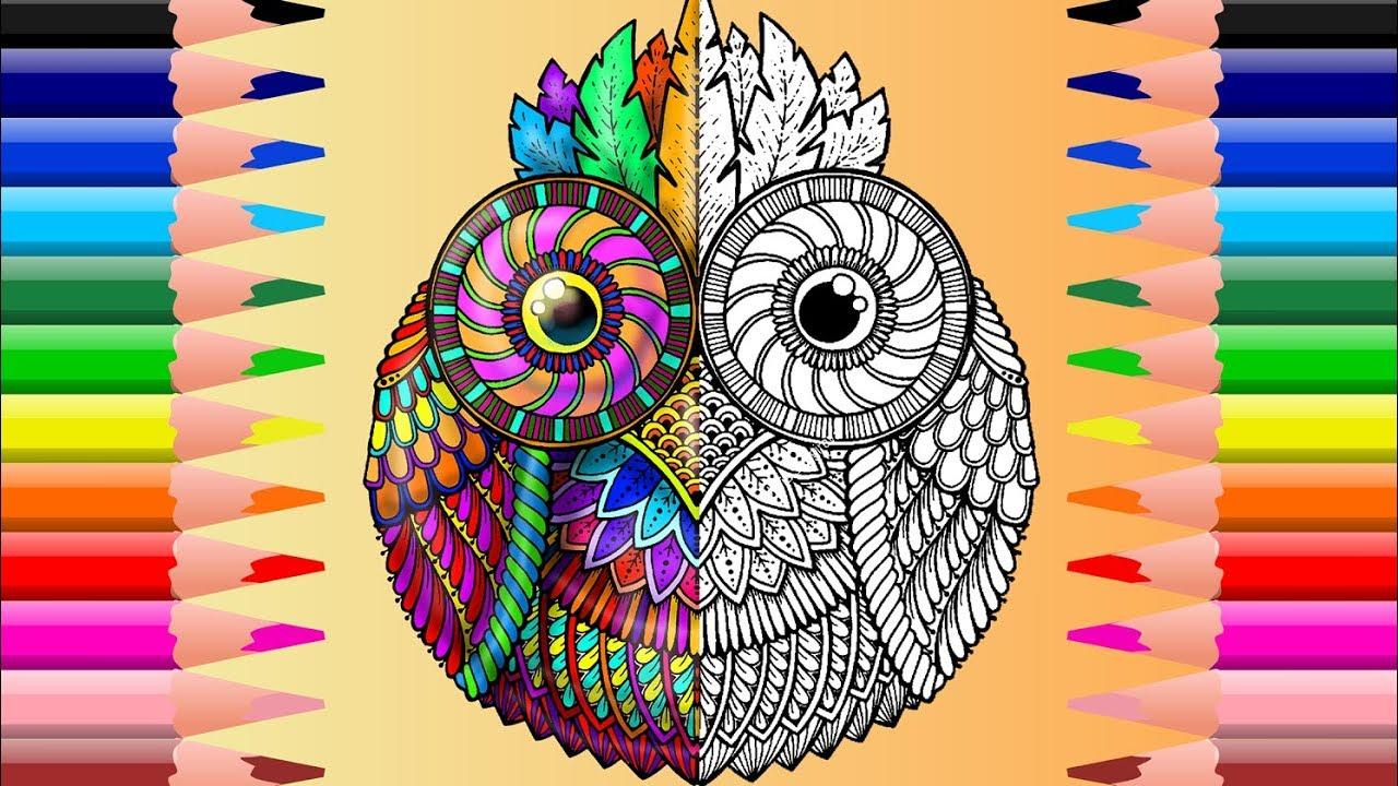 Pequeño Búho Mandala Para Colorear Cute Little Owl Mandala