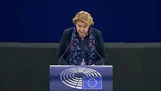 Intervento durante la Plenaria a Strasburgo dell'europarlamentare Caterina Chinnici sull'Impatto della violenza da parte del partner e dei diritti di affidamento su donne e bambini.