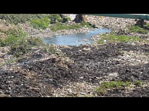 Appalling video: Nairobi river flowing under garbage, literally.  Someone needs to feel ashamed!