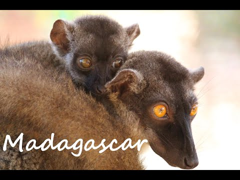 Madagascar - Road Trip - Tana - Majunga - Nosy be