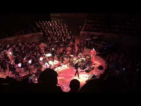 Download The Flaming Lips w/ Colorado Symphony Orchestra A Spoonful Ways a Ton - Denver 2.22.19 live Mp4 baru