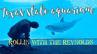 ~Texas State Aquarium~ ROlLiN WITH THE REYNOLDS