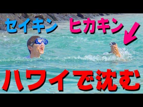 【悲報】ヒカキン&セイキン ハワイの海で沈む・・・
