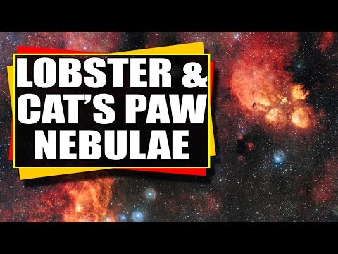 Astronomy Video: Looking At The Lobster and Cat's Paw Nebulae – The Wonders Of Space