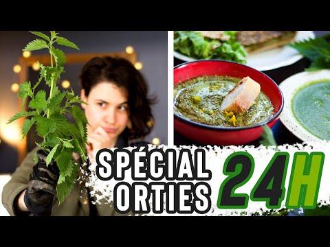 24-h-je-mange-de-l'ortie-à-chaque-repas-!-vegan