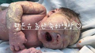 황온유 출산 축하 영상 20. 3. 5.