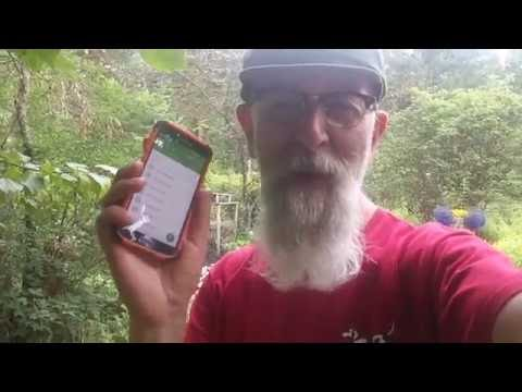 Google Goggles for plant identification (Weekend Words #23)