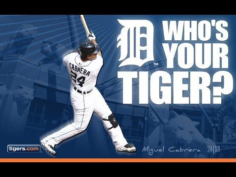 Detroit Tigers 2016 Season Highlights