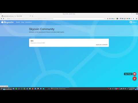 Skycoin BBS Showcase 4