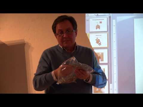 Мумиё: применение, свойства алтайского мумиё.