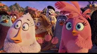 Мультфильм Angry Birds в кино в HD смотреть трейлер