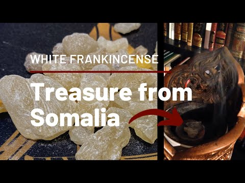 Luban From SOMALIA - Frankincense