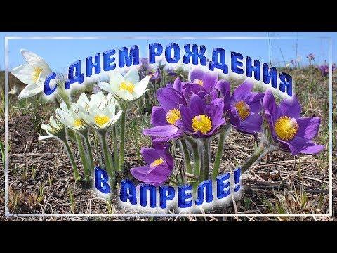 С Днем рождения в апреле Очень красивое поздравление Видео открытка - Смешные видео приколы