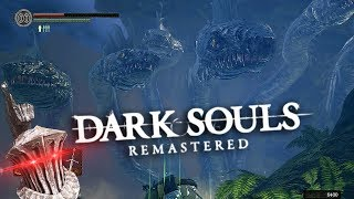 Dark Souls REMASTERED On PC: Remastered HYDRA & HAVEL! (#2)