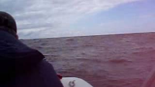 Волна под метр