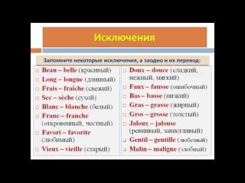 Уроки французского #30: Род и число прилагательного