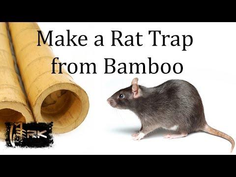 How to make a bamboo Rat Trap - Tilong Rat Trap