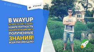 Отзыв WAYUP. Веб-Дизайн. Кирилл Новобранов