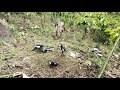 Mikat Burung Kacer Terbaru  Kacer Liarnya Ngobra Ngobra  Mp3 - Mp4 Download