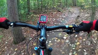 Durham Forest Mountain Bike  Singletrack - The Five B's