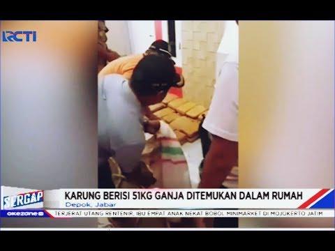Petugas Temukan 51 Kg Ganja dalam Rumah Pasca Banjir di Depok - Sergap 03/01