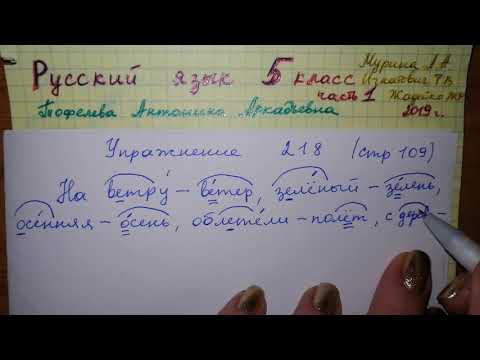 Упр 218 стр 109 Русский язык 5 класс 1 часть Мурина 2019 гдз образец синтаксического разбора