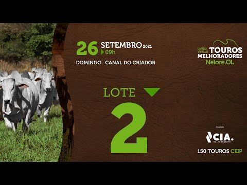 LOTE 2 - LEILÃO VIRTUAL DE TOUROS 2021 NELORE OL - CEIP