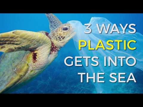 How does plastic end up in our oceans ?