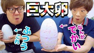 超巨大卵を孵化させたらまさかの◯◯が生まれた・・・【ヒカキン&セイキン】