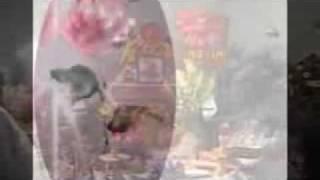 Mẹ Vàng Úa - Phạm Anh Dũng