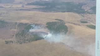 Первый лесной пожар в Башкирии
