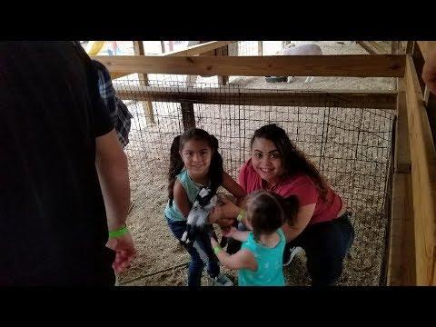 Nos Fuimos al Zoologico en la Finca  Farm Petting Zoo
